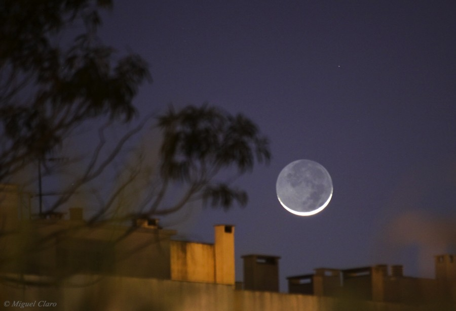 CrescentMoon_6058-crop-net