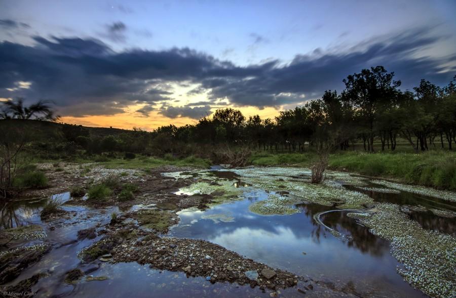 LandscapeHerdadeContienda-Charco-net