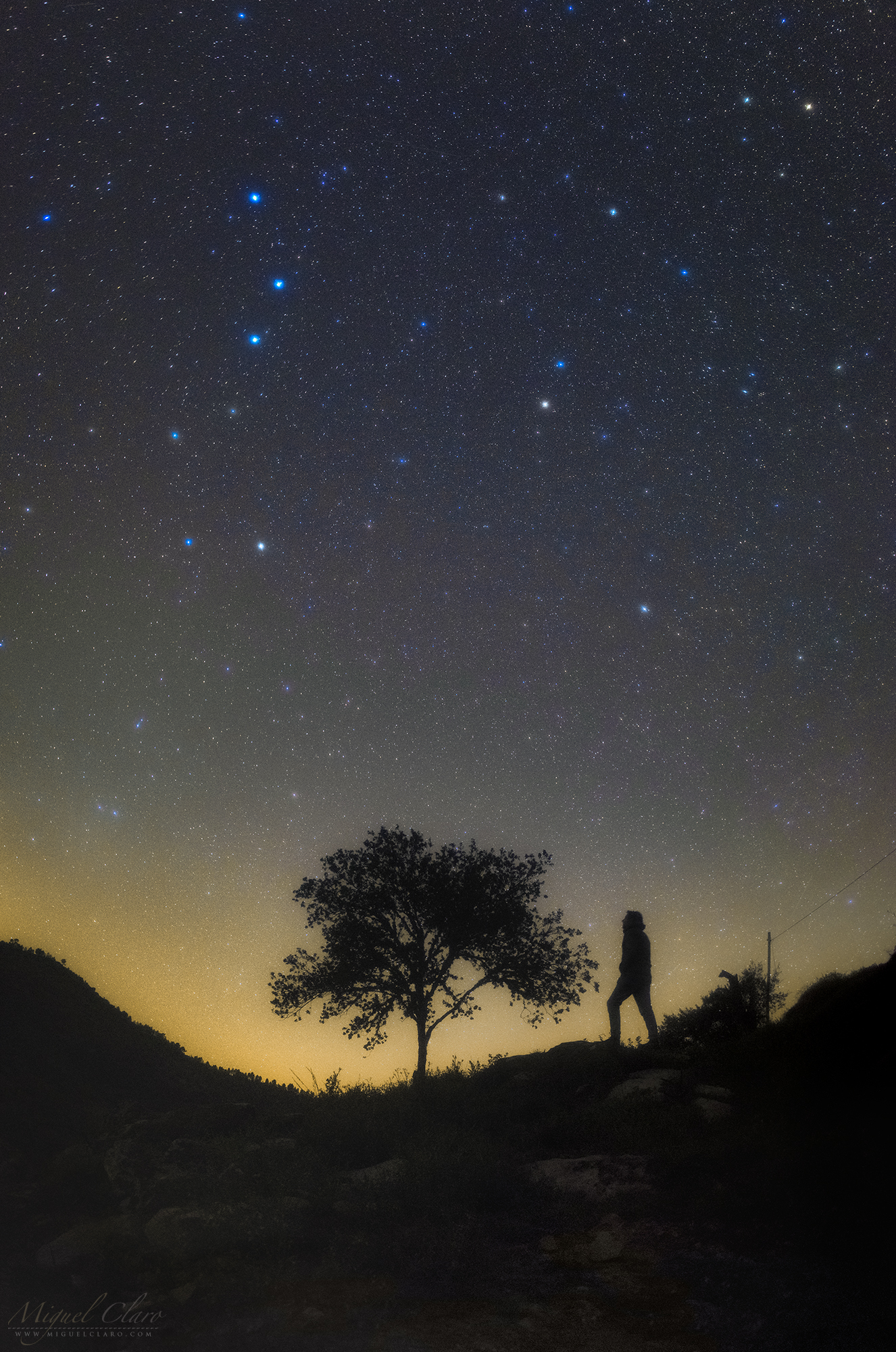 Stars And Constellations Portfolio Categories Astrophotography